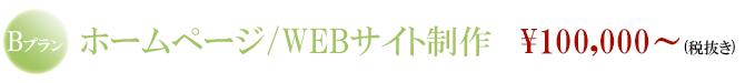 Bプラン ホームページ・デザイン 制作費用:100000円